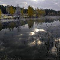 Черное золото :: Игорь Шербаков
