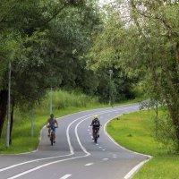 Велосипедная трасса. :: Юрий Шувалов
