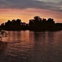 Багровые реки :: Ирина Приходько