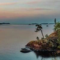 цвет севера :: Ирэна Мазакина