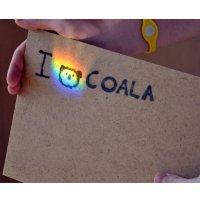 love coala. :: Энни Герей