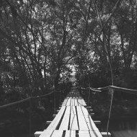 Мост в никуда :: Nikita Sychev