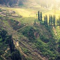 Гималаи. Долина Парвати. :: Мария Майданова