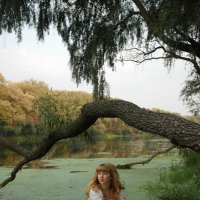 На дереве :: Erin Завгородняя