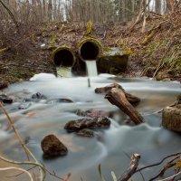 Молочные реки :: Сергей Бернацкий