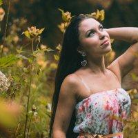 летнее время :: Ксения Калачева