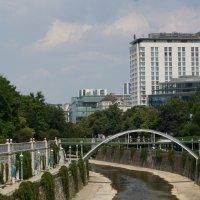 Река Вена(где плавают рыбки с фото 2). :: Галина Кучерина