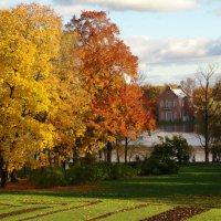Осенний  шарм :: Анастасия Соболева