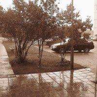Родной двор,в дождливый день... :: Дашенька Лабуткина