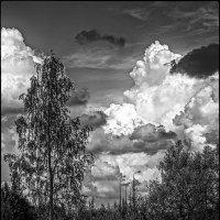 Перед дождём. :: Vladimir Kraft