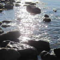 Море и  солнце :: Маера Урусова