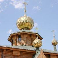 Тула. Золотые купола :: Александр Николаев