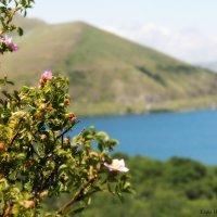 Lake Sevan :: Liana Harutyunyan