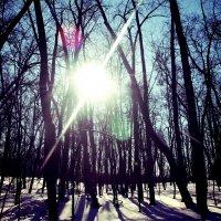 #зима :: Алина Гаф