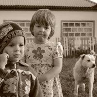 Лето в деревне :: Татьяна Постольник