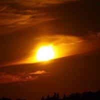 закат :: Никита Храмцов
