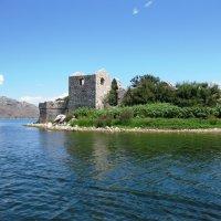 Скадарское озеро :: Инна .Дашевская