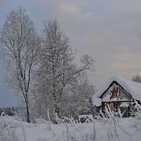 немножко зимы :: Елена Третьякова