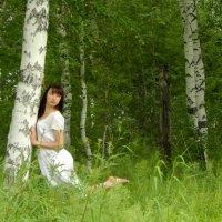 Стройность леса :: Анастасия Гладкова
