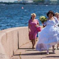 Где мой жених?! :: Владимир Бриг