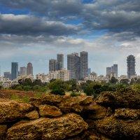 Tel Aviv :: Svyatoslav Zolotaryov