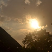 Во время дождя... :: Tanya Marchuk