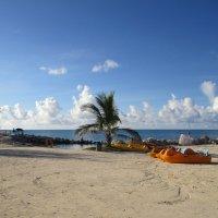 Bermuda :: Eugenia Kazarnovskaya