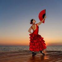 Фламенко на закате :: Алексей Яковлев