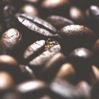 Зерна кофе :: Софья Гриценко