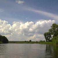 Солнечный денёк. Река Великая :: Наталия Павлова