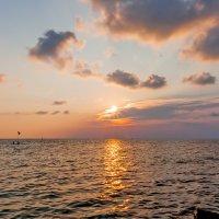 Южный вечер над морем :: Елена Васильева