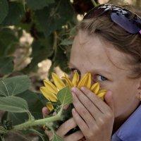 цветы жизни :: Елена Назарова