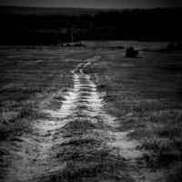 К горизонту... :: Екатерина Козлова