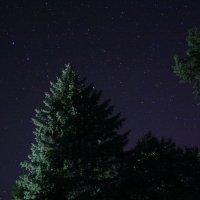Ночь, бессонница, звёзды ... и фотоаппарат) :: Виктор Пархоменко