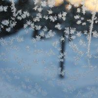 снежинки :: Анна Сидорова