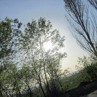 Закат солнца :: Снежанна Ключик