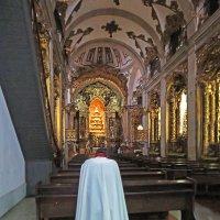 Церковь Кармелиток. :: ИРЭН@ Комарова