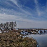 Небо над Клязьмой :: Андрей Дворников
