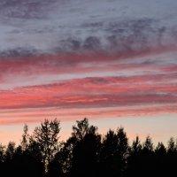 Такое разное небо :: Tatiana Kravchenko