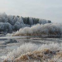Морозное утро. :: ВАЛЕНТИНА ИВАНОВА