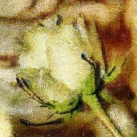 Как хороши, как свежи были розы.... :: Tatiana Markova