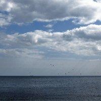 Чистая синяя гладь стелется вдоль горизонта... :: Людмила