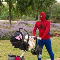 Человек-паук папа :: Ефим Журбин