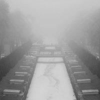 Там... за туманами.. :: tipchik