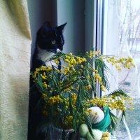 Что делать, весна! :: Ольга Кривых