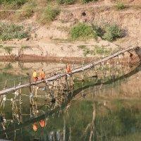 Бамбуковый мост :: Елена