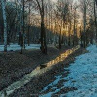 Центральный парк, Воронеж :: Roman Dergunov