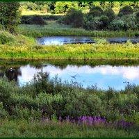 Озерца :: Наталья