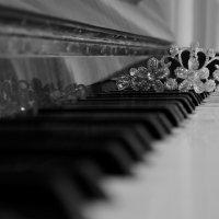 Музыка :: Юлия Дмитрий