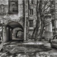Наш дворик :: Дмитрий Б.